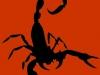 scorpion-red