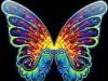 Flutterbuns