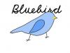 Bluebird91