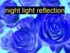 nightlightreflection