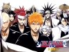 Bleach Fan Club!!