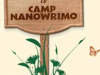 camp nanowrite