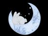 Dreaming Rabbit Press