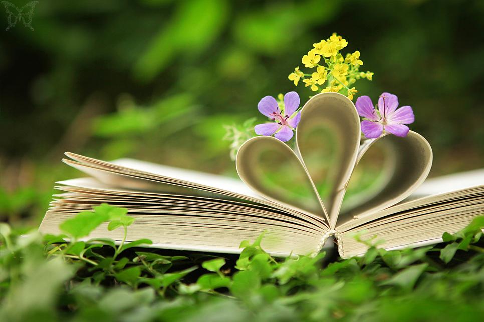 Поэзия природы - Наталия Леонидовна Степанова