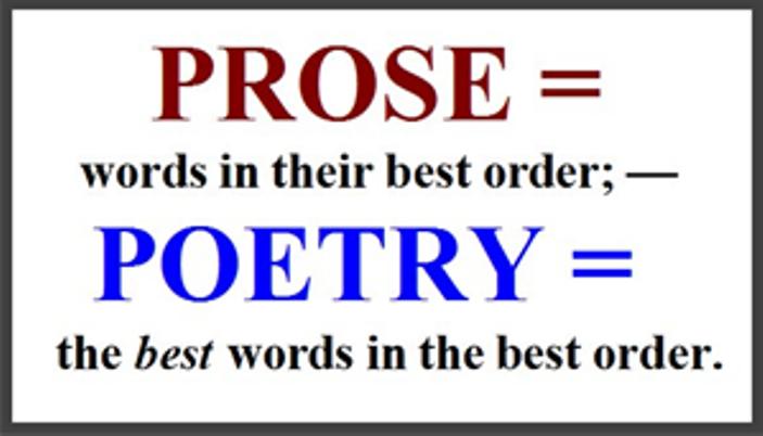 essay definition prose essay definition