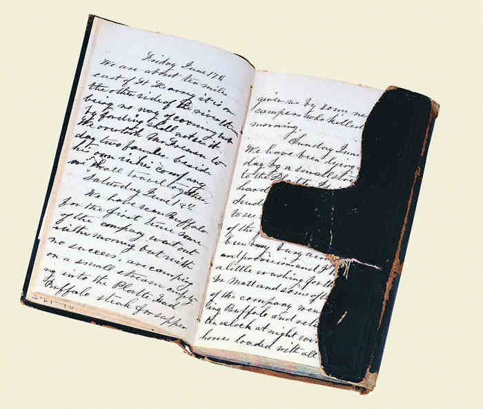 alice williamsons diary