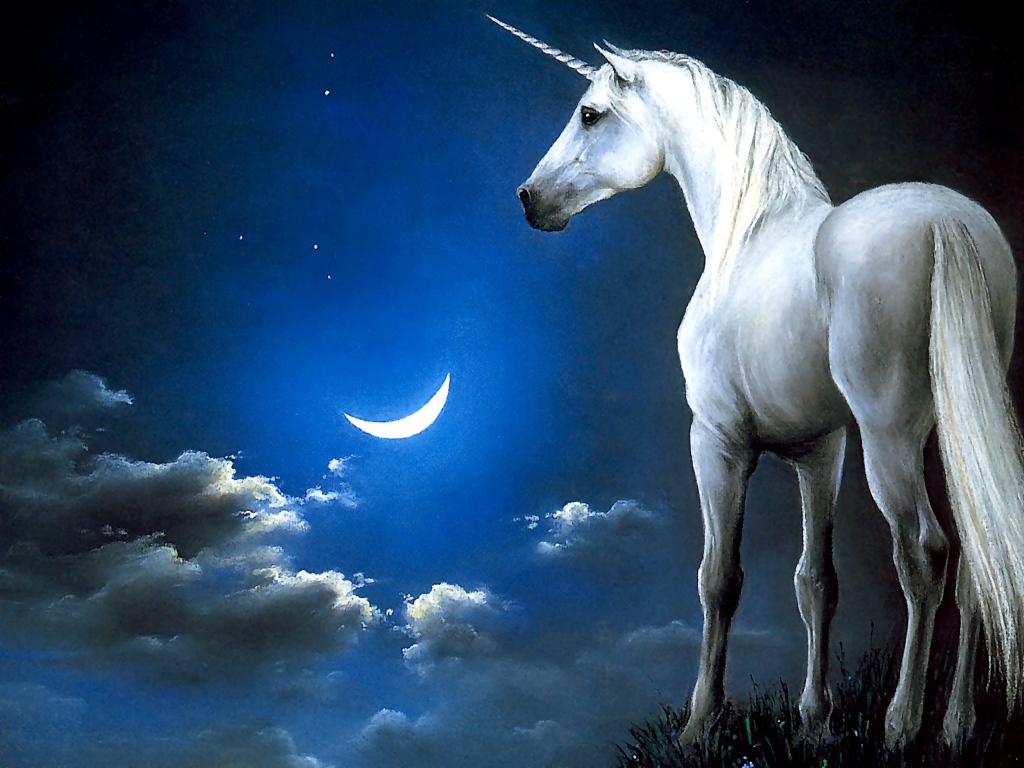 Pretty unicorns over the moon where unicorns