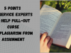 5 Points by Service Experts to Help Pull-out Curse of Plagiarism from Assignment
