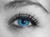 Precious Blue Eyes