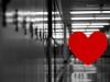 Hallway Of Love