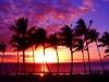 So Many Sunsets....