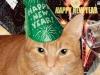 Rusty's New Years Celebration