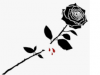 Hearts that bleed the color of roses