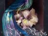 The Birds of Belkalam