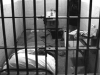 ALONE IN A CELL