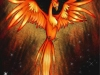 Bird Of The Flames
