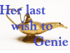 Her Last Wish to Genie