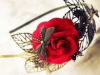 Red Rose, Dragonfly