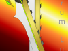 Legend of Mautau: Angelorum Lux