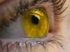 Eye is the Sun