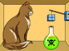Cat State