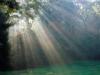 ~Bright Streams of Sunbeams~