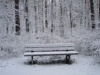 Rambling of the Cold and Alone