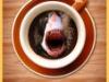 Don't Sugar My Coffee