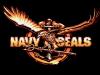 Navy SEALs: The Navy's Best