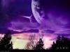 My Moonlit Theme