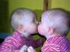 Last Kiss??