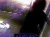 Dead Raine