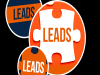 Excellent Quality LEADS