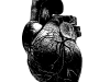 Ink Heart